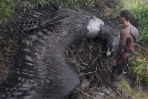 after_earth_eagle